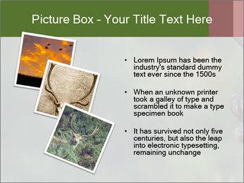 0000076921 PowerPoint Templates - Slide 17