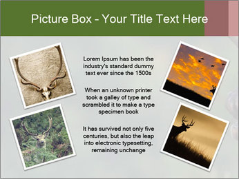 0000076921 PowerPoint Templates - Slide 24