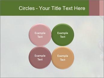 0000076921 PowerPoint Templates - Slide 38