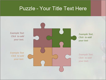 0000076921 PowerPoint Templates - Slide 43