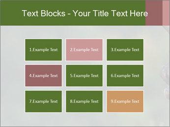 0000076921 PowerPoint Templates - Slide 68