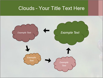 0000076921 PowerPoint Templates - Slide 72
