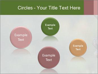 0000076921 PowerPoint Templates - Slide 77