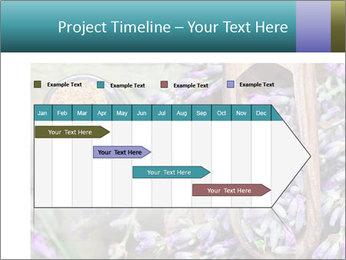 0000076929 PowerPoint Template - Slide 25