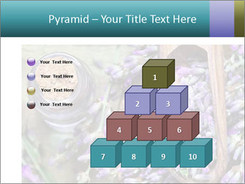 0000076929 PowerPoint Template - Slide 31