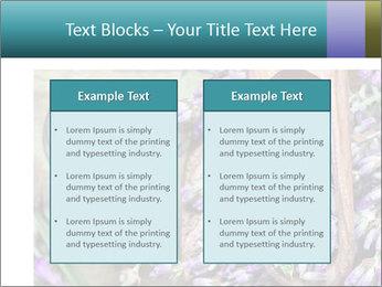 0000076929 PowerPoint Template - Slide 57
