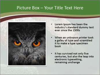0000076935 PowerPoint Template - Slide 13