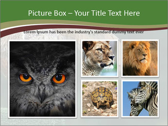 0000076935 PowerPoint Template - Slide 19