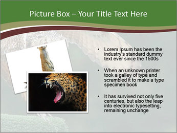 0000076935 PowerPoint Template - Slide 20