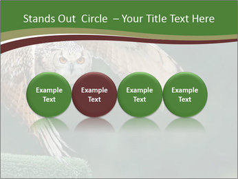 0000076935 PowerPoint Template - Slide 76