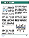 0000076937 Word Template - Page 3