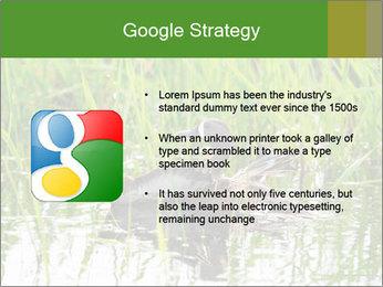 0000076953 PowerPoint Template - Slide 10