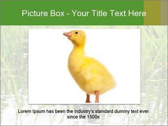 0000076953 PowerPoint Template - Slide 16