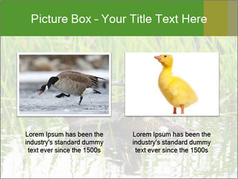 0000076953 PowerPoint Template - Slide 18
