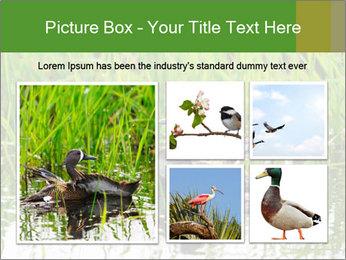 0000076953 PowerPoint Template - Slide 19