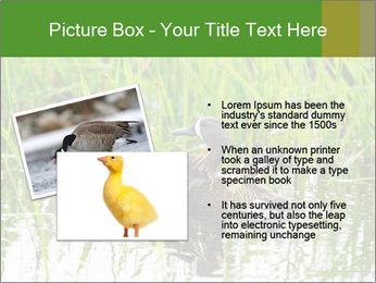 0000076953 PowerPoint Template - Slide 20