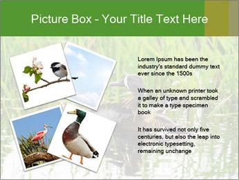 0000076953 PowerPoint Template - Slide 23