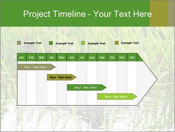 0000076953 PowerPoint Template - Slide 25