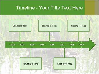 0000076953 PowerPoint Template - Slide 28