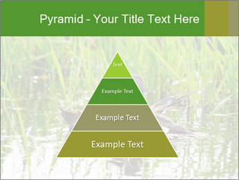 0000076953 PowerPoint Template - Slide 30