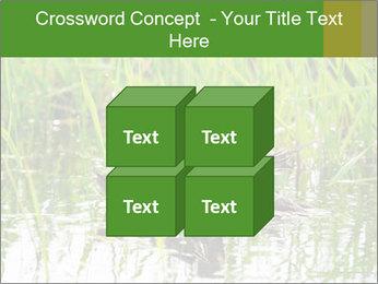 0000076953 PowerPoint Template - Slide 39