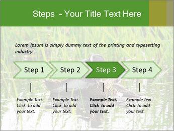 0000076953 PowerPoint Template - Slide 4