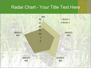 0000076953 PowerPoint Template - Slide 51