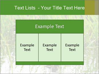 0000076953 PowerPoint Template - Slide 59
