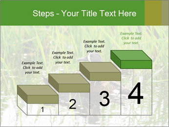 0000076953 PowerPoint Template - Slide 64