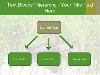 0000076953 PowerPoint Template - Slide 69