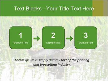 0000076953 PowerPoint Template - Slide 71