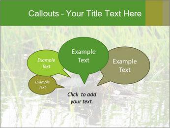 0000076953 PowerPoint Template - Slide 73