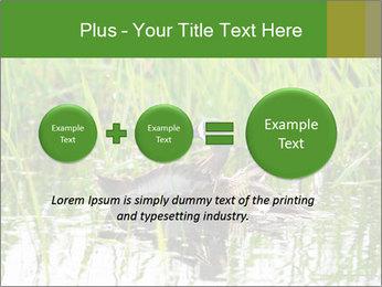 0000076953 PowerPoint Template - Slide 75