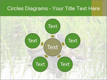 0000076953 PowerPoint Template - Slide 78