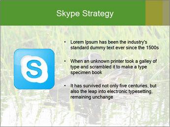 0000076953 PowerPoint Template - Slide 8