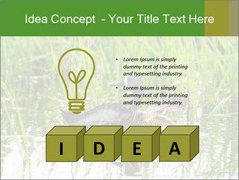 0000076953 PowerPoint Template - Slide 80