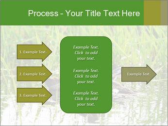 0000076953 PowerPoint Template - Slide 85