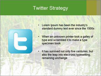 0000076953 PowerPoint Template - Slide 9