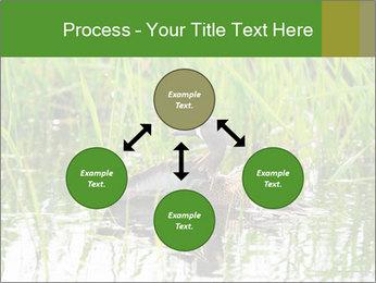 0000076953 PowerPoint Template - Slide 91