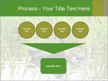 0000076953 PowerPoint Template - Slide 93