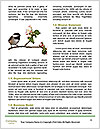 0000076953 Word Template - Page 4