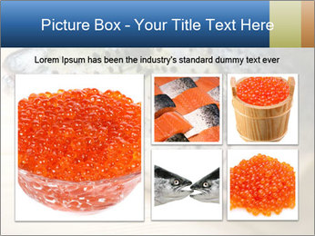 0000076954 PowerPoint Template - Slide 19