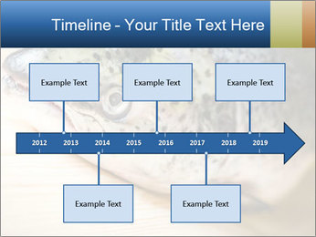 0000076954 PowerPoint Template - Slide 28