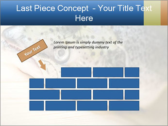 0000076954 PowerPoint Template - Slide 46
