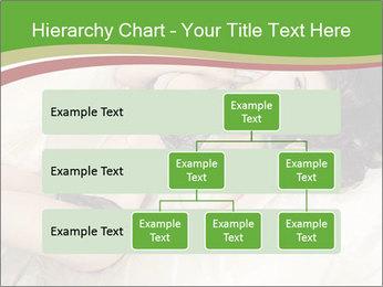 0000076955 PowerPoint Template - Slide 67
