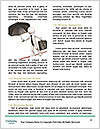 0000076956 Word Templates - Page 4