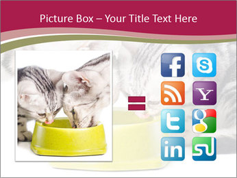 0000076965 PowerPoint Templates - Slide 21