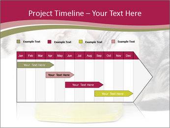 0000076965 PowerPoint Templates - Slide 25