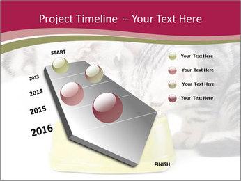 0000076965 PowerPoint Templates - Slide 26