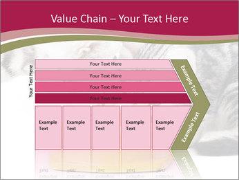 0000076965 PowerPoint Templates - Slide 27